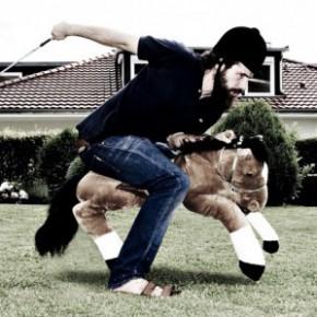 Eine Reitbeteiligung gesucht - als Pferdebesitzer