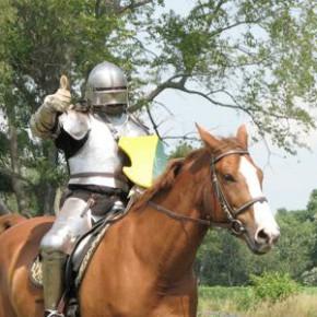 Positives Pferdetraining